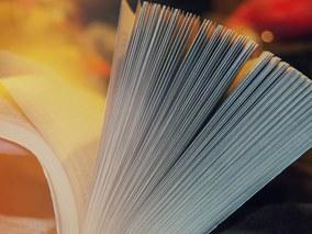 Beste Bachelorarbeiten 2017 im Bereich Human Resource Management