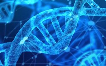 Digitaler Wandel im Gesundheitswesen: FHNW lanciert neues Masterstudium «Medical Informatics»