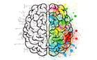 Neue Studienrichtung: Economic Psychology