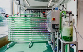 Naturstoffe und Naturstofftechnik