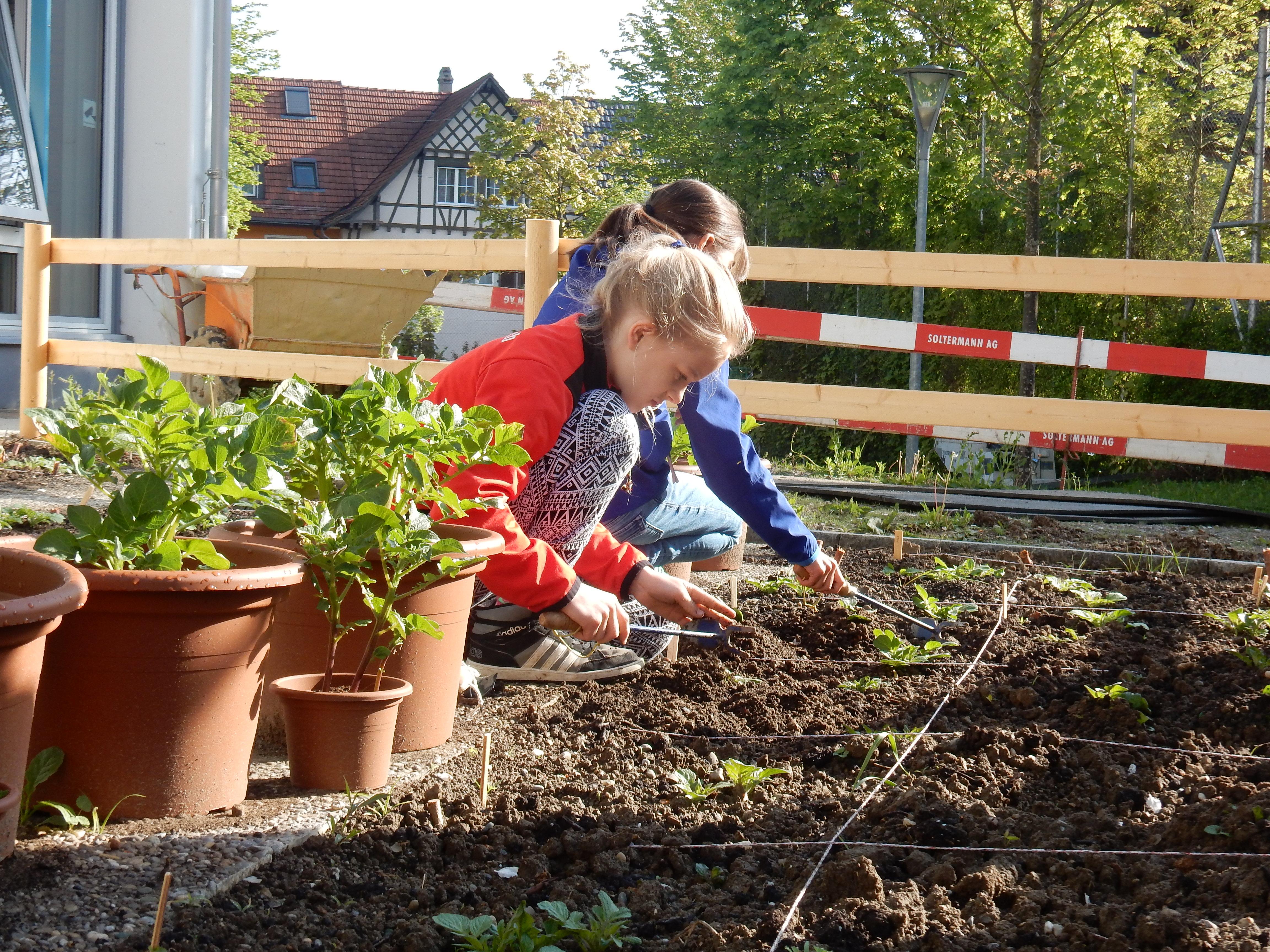 BNE-Garten-Labor