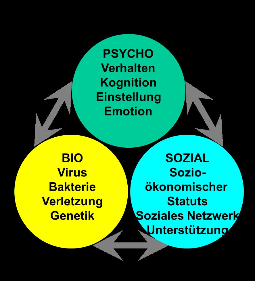 Biopsychosoziale Modell von Engel, Soziale Arbeit und Gesundheit,