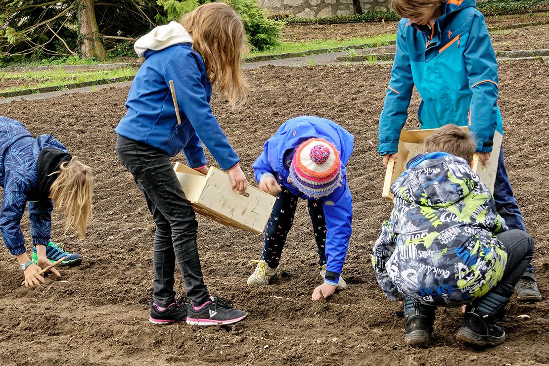 Schulklassen_beimPflanzen.jpg