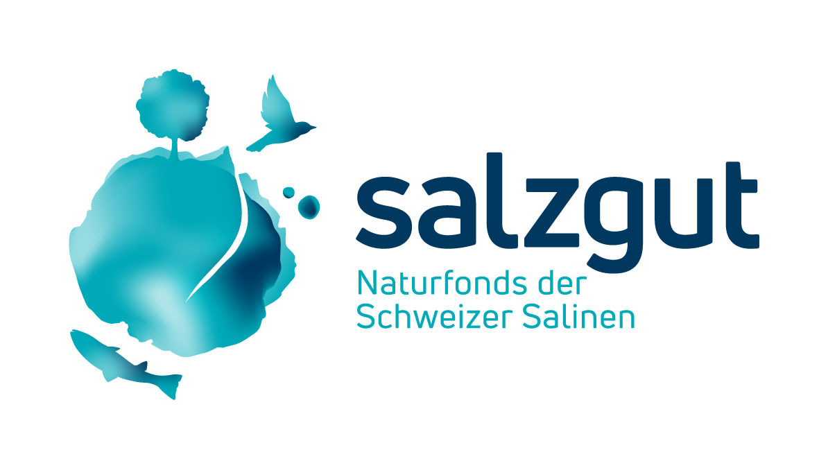 Salzgut_Logo_RGB-web.jpg
