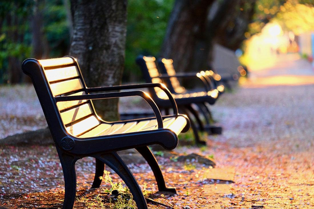 Zwei leere Sitzbänke in einem Park
