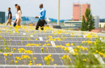 Nachhaltige Solarpanels