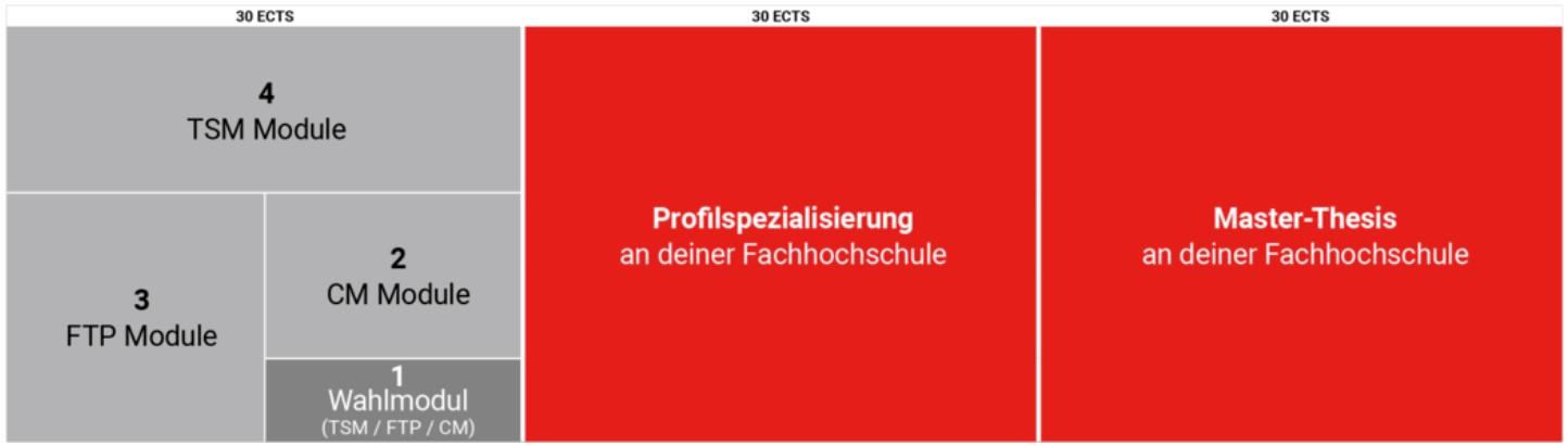 Studienaufbau_ECTS.jpg