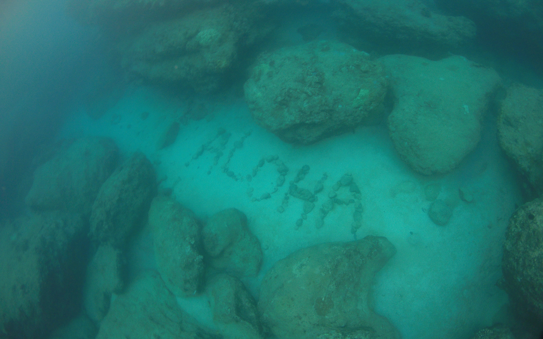 michelle_ciba_aloha-underwater.png