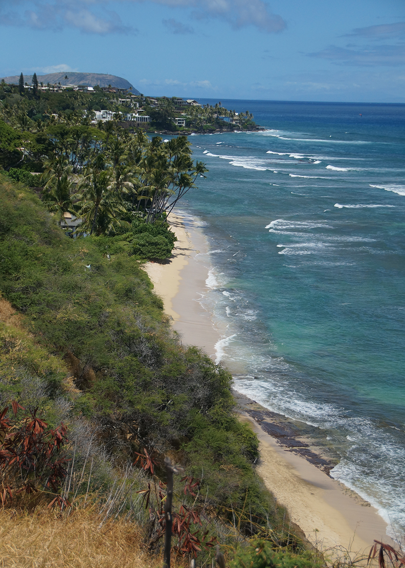 michelle_ciba_Diamond-head-beach.png