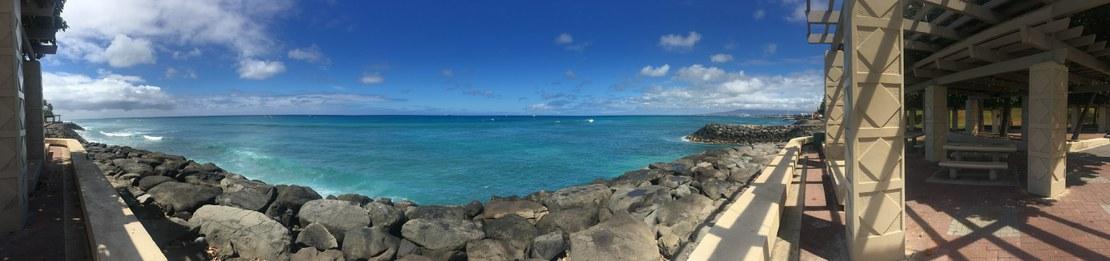 HLS-Deana-Hawaii 2.jpg