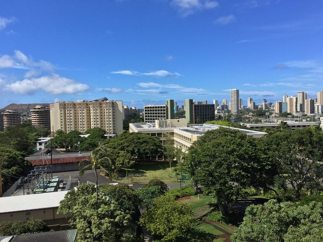 HLS-Deana-Hawaii 6.jpg