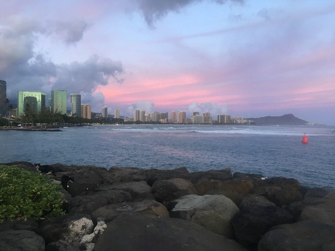 HLS-Hawaii-gross-3.jpg