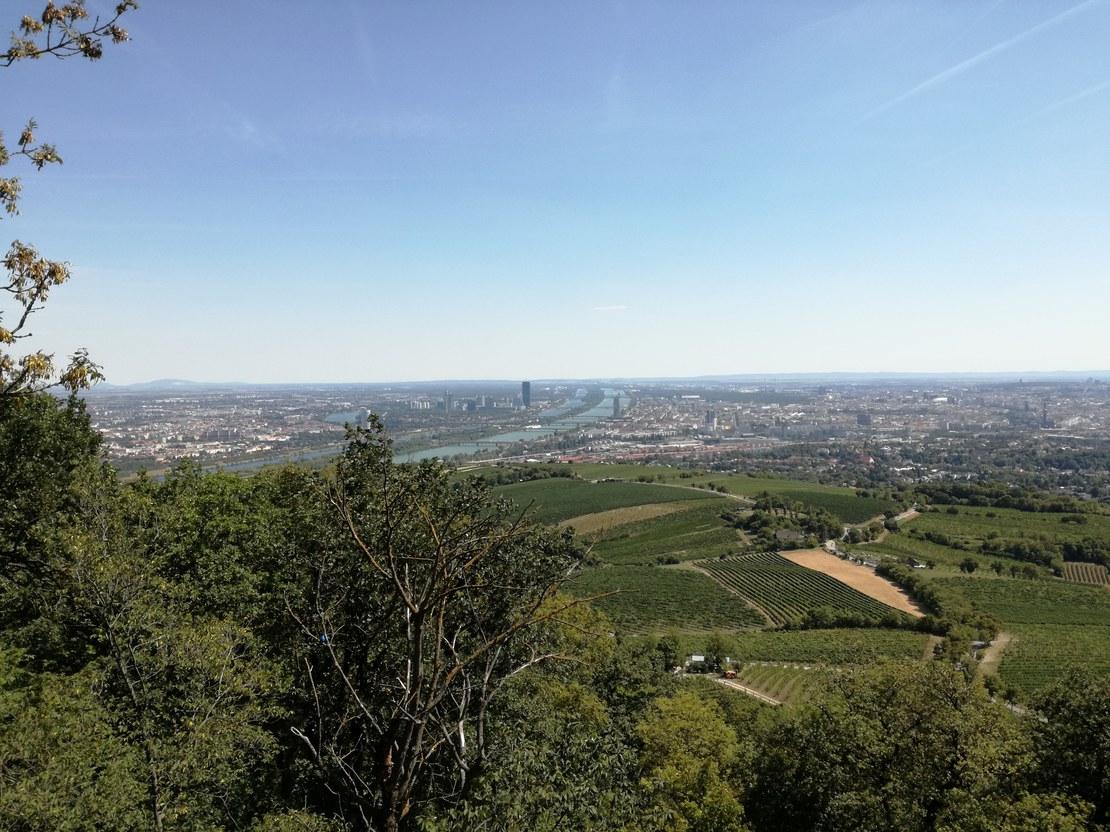HLS-Wien-Frossard-1.jpg