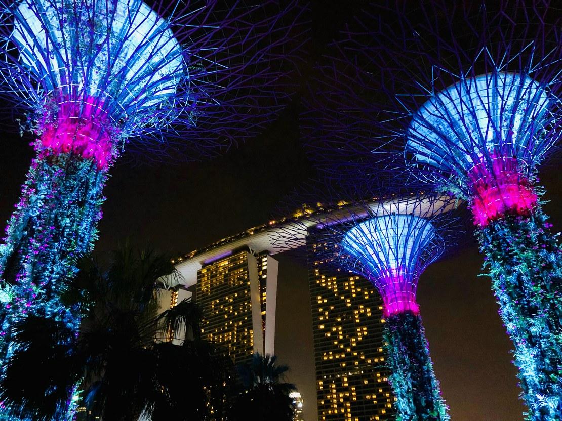 05_hauck_Gardens by the bay mit Aussicht auf das Marina Bay Sands.jpeg