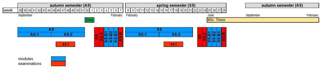 HLS-MSc-Semesterstruktur-2018-web.jpg