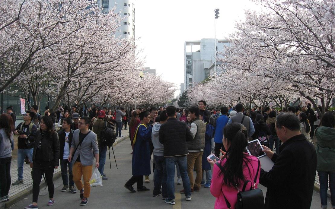 Mechatronik_Exkursion_China_2.jpg
