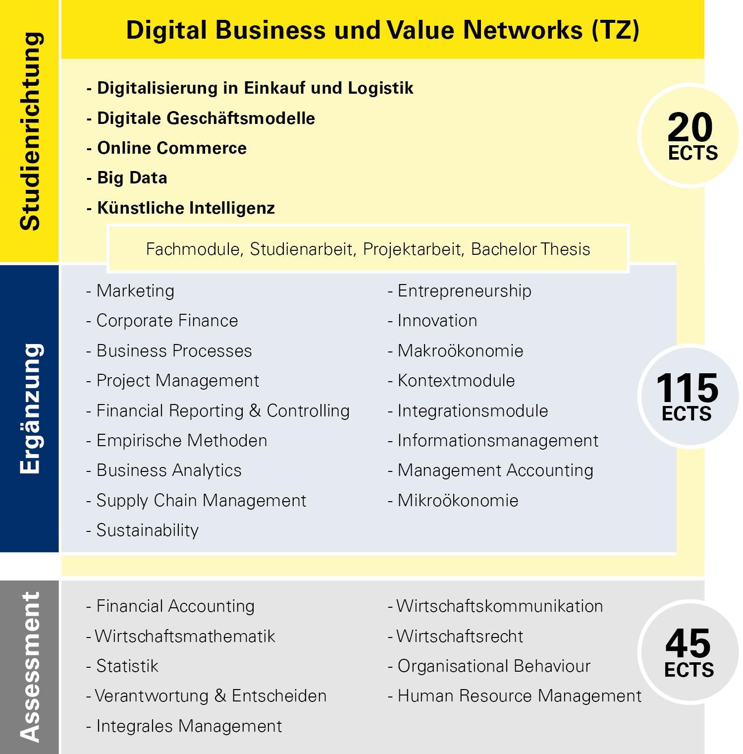 Modulübersicht Digital Business und Value Networks Teilzeit