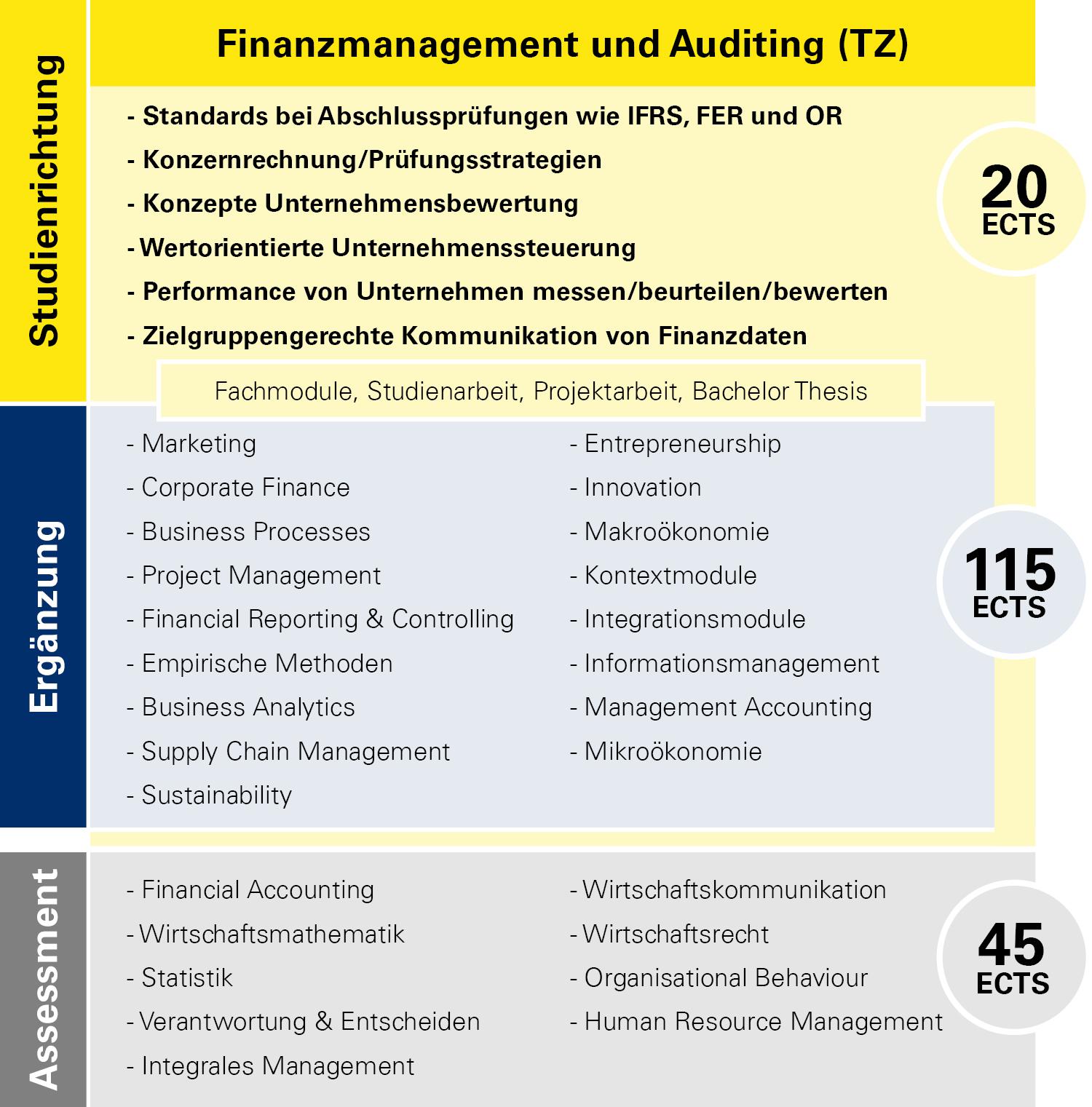 Modulübersicht Finanzmanagement und Auditing Teilzeit