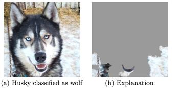 data-science-husky-test.png