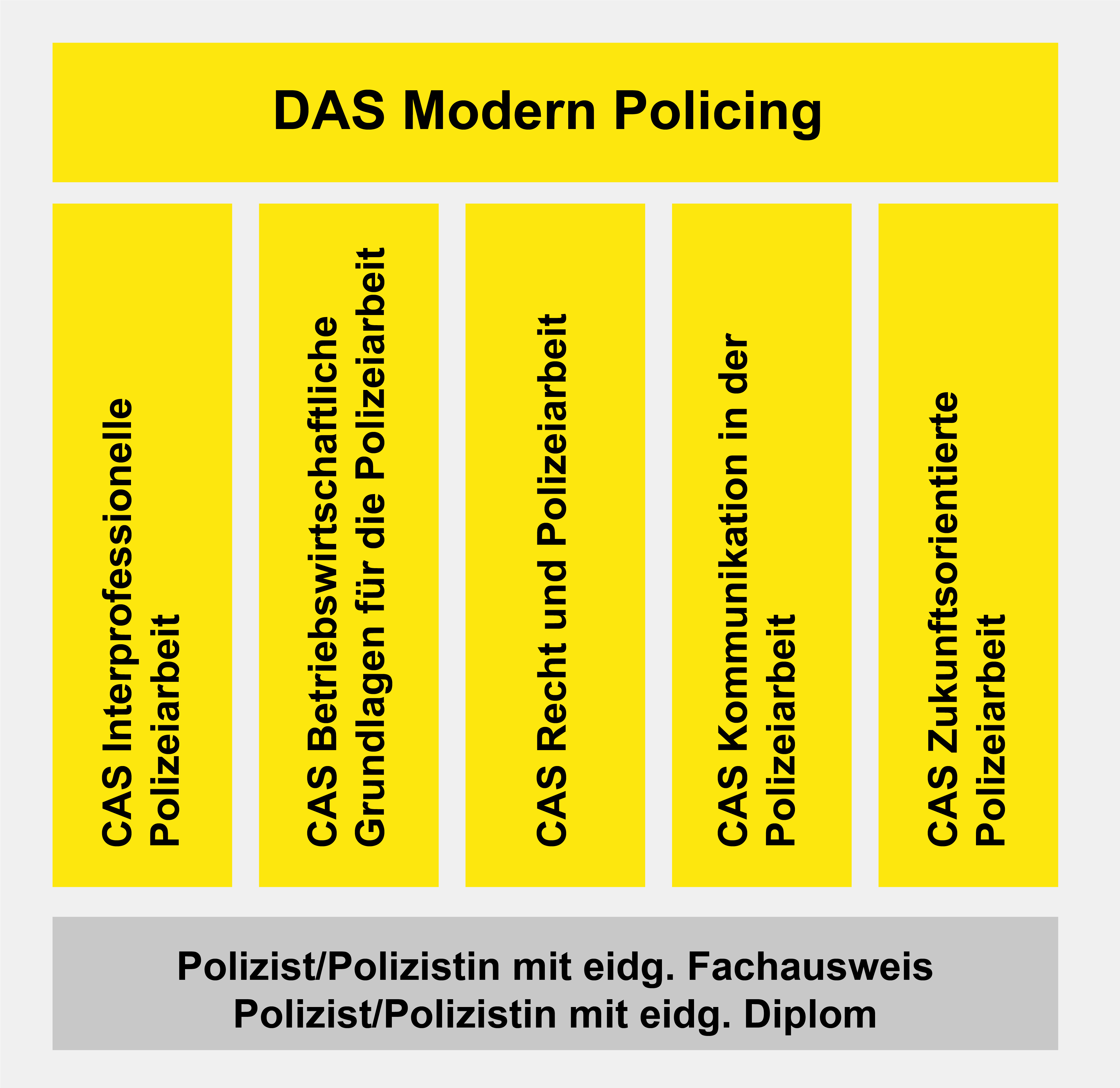 DAS Modern Policing