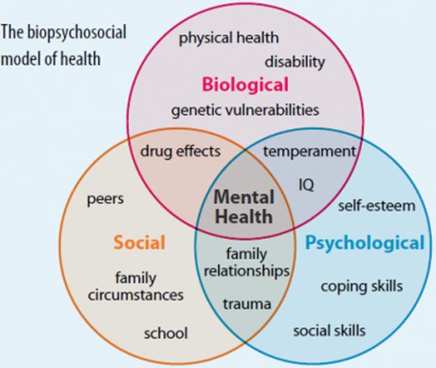 Biopsychosocial Modell