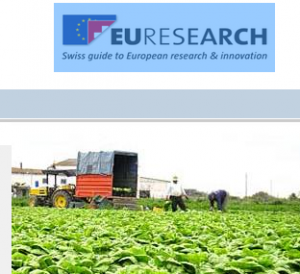 Euresearch Homepage_20133